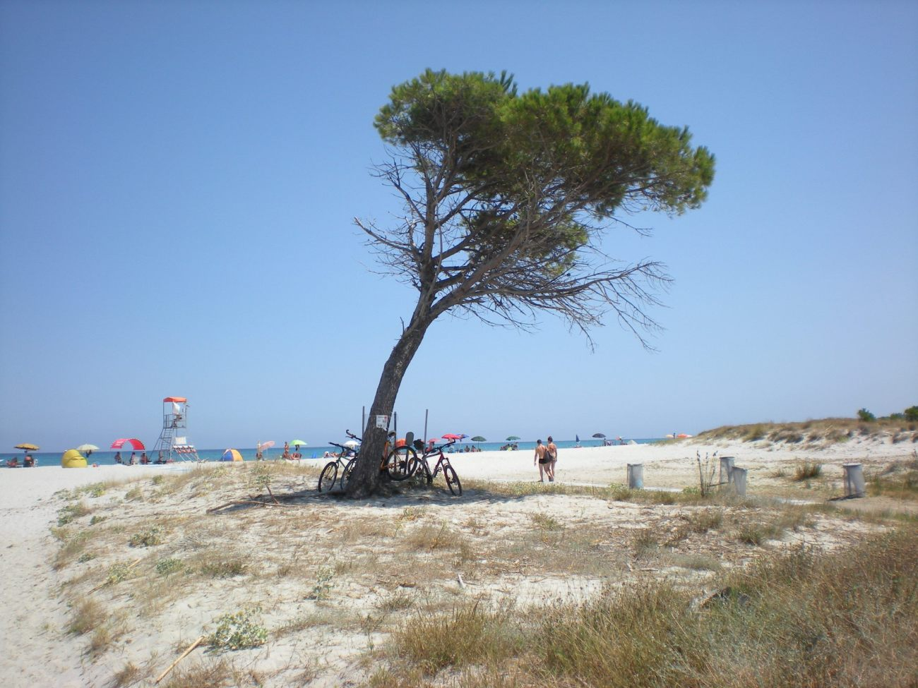 La calletta beach, San Teodoro Sardinia
