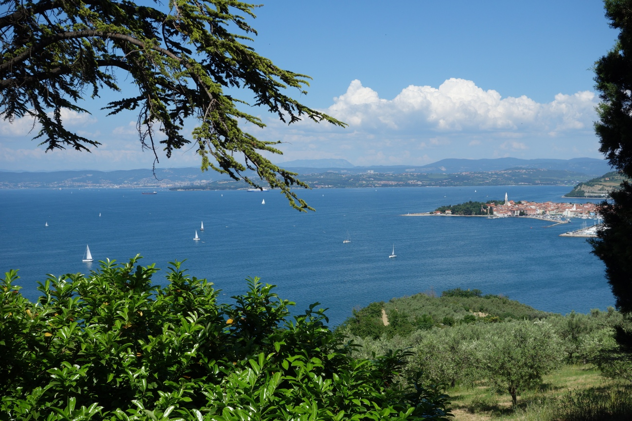View over Izola, Slovenia